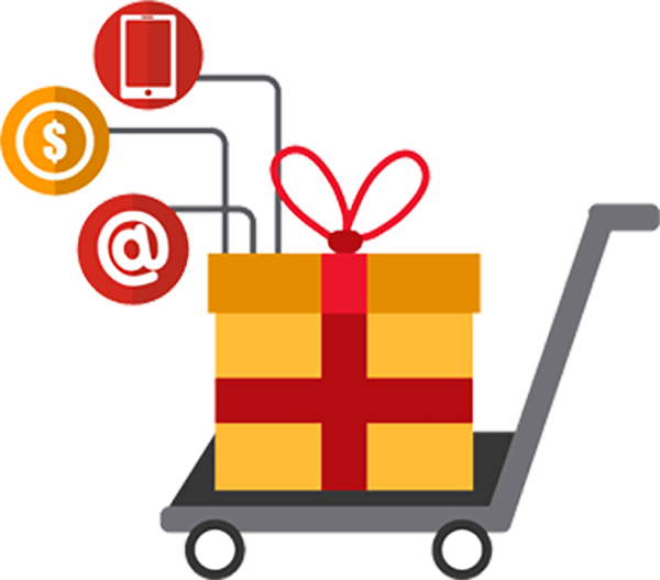 Build your very own custom cart for your e-store using our custom web application development services